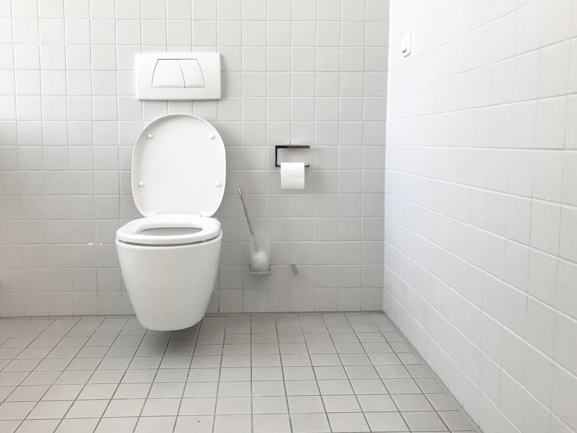 Toilet Gurgling